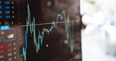 belajar saham pemula